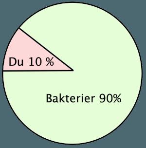 probiotika tarmflora