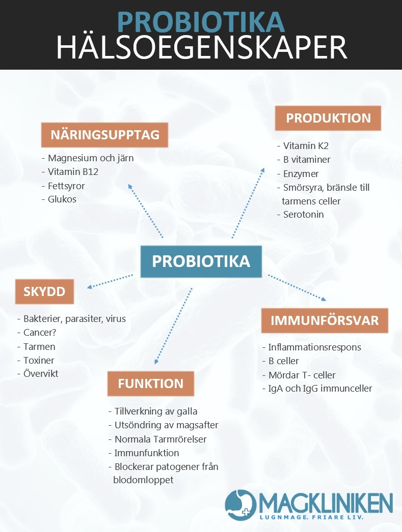 vad är probiotika