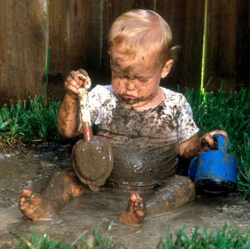 bacteria dirt