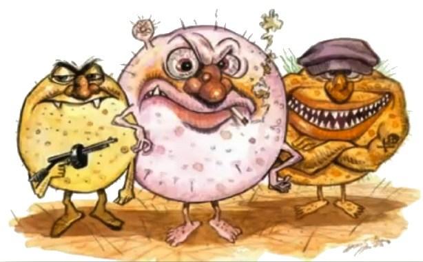 bästa probiotika tabletter