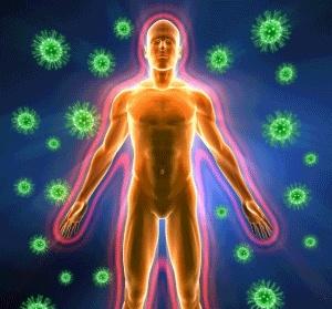 immunförsvar svamp candida bakterier kokosfett