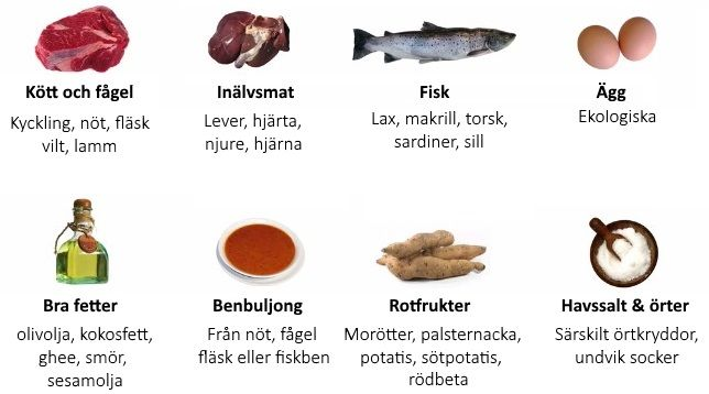 candida i tarmen symptom