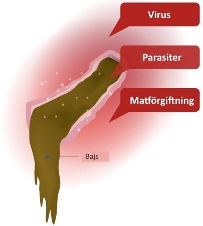 varför får man diarre