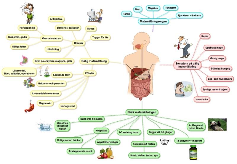 dålig matsmältning behandling